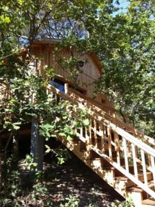 La cabane au bord du lac in biscarrosse france best rates guaranteed lets book hotel - La cabane au bord du lac ...