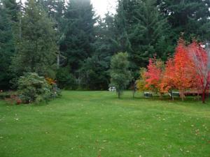 Caba a cumelen en villa la angostura argentina mejores for Jardin 61 bariloche